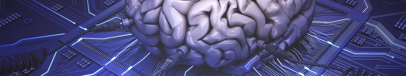 Brain © iStockphoto.com/Petrovich9