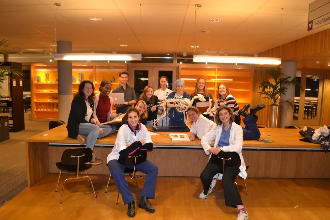 Studentenraad 2018-2019 van de faculteit Diergeneeskunde