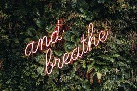 Afbeelding ter promotie van de wellbeing week met de tekst 'and breath'