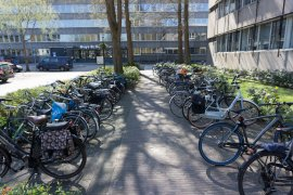 The bike parking at the Leonard S. Ornstein Laboratory