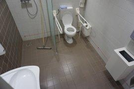 The accessible toilet of the Sjoerd Groenman building