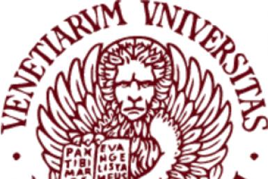 Università Ca' Foscari Venezia Logo.